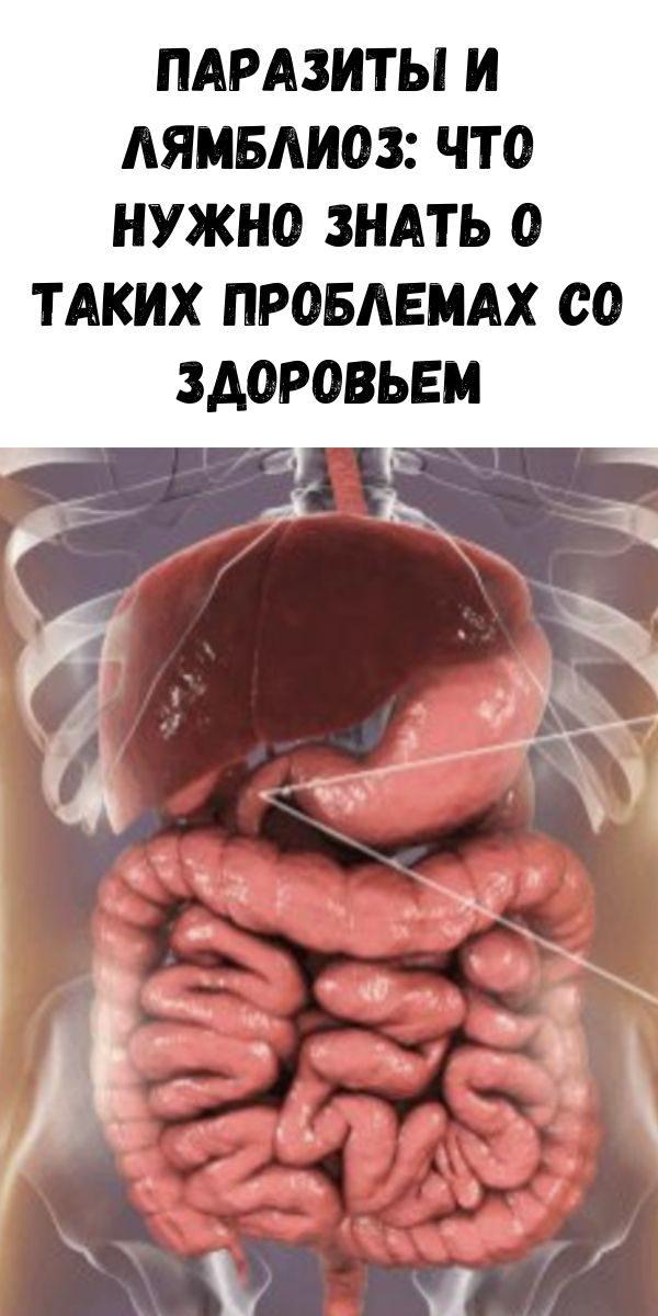 zhurnal-dlya-zhenschin-18-3