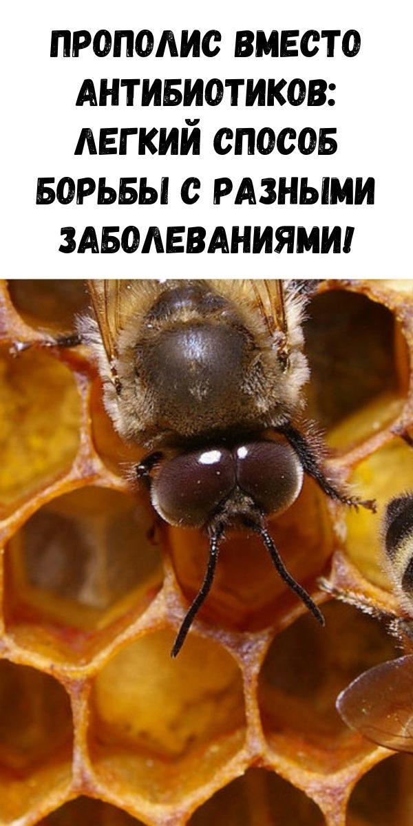 zhurnal-dlya-zhenschin-4-3